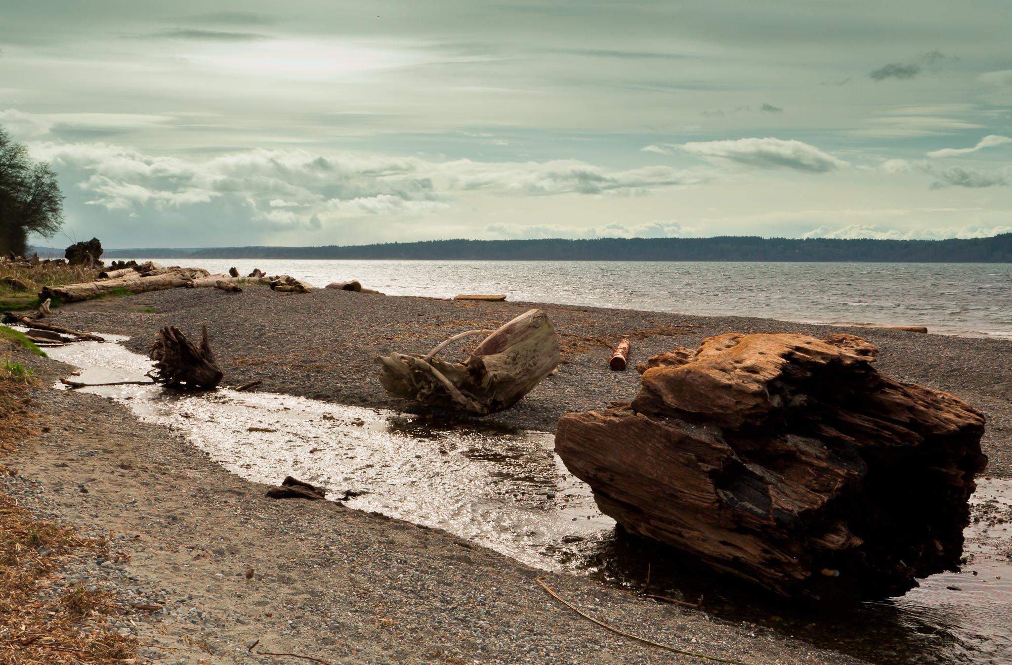 Seahurst Park Shoreline Restoration